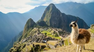 Machu-Picchu-with-Lama
