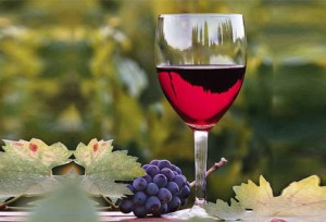 South-America-Travel-Wine-Tourism-in-Chile-and-Argentina-15541