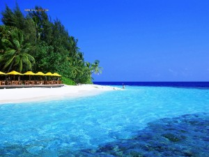 maldives-beauty-shore1