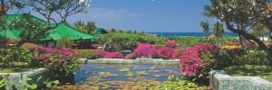 1280x427xGrand-Hyatt-Bali-Ocean-Garden-View1.jpg.pagespeed.ic_.g07VK7mFd41