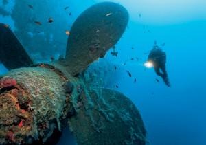Larnaca-diving1