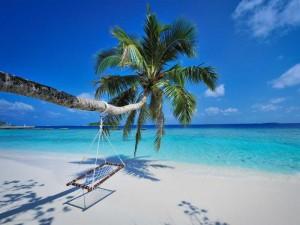 What-a-Beach1