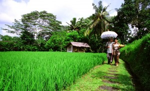 walking-from-the-bali-house1