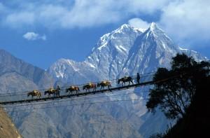 Pokhara-Nepal1