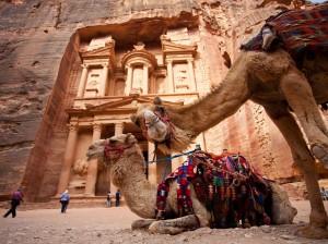 Camels-Petra1