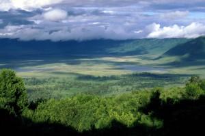 Ngorongoro1