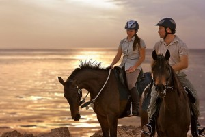 Sir_Bani_Yas_Stables_Royal_Bay_Ride1