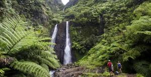 Tahiti-Waterfall1