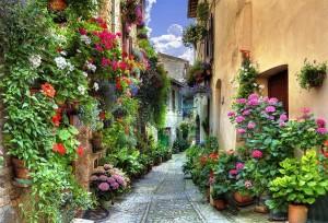 Toscana-street-with-flowers11