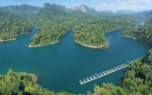 Rainforest-Camp11