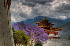 BhutanVista1